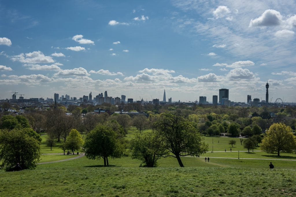 Primrose Hill, the top of a Regent's Park running route.